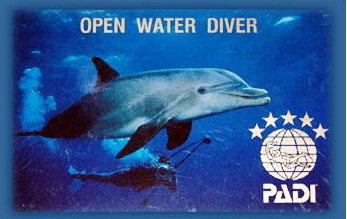 Open Water Übersteller Kurs-1622