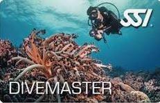 Divemaster Kurs-0