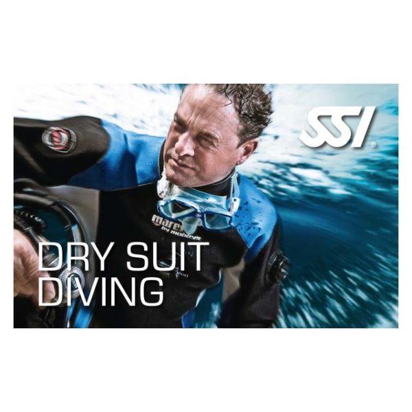 Logos - SSI-Dry