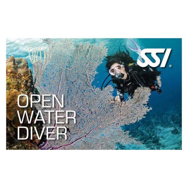 Logos - SSI-OWD