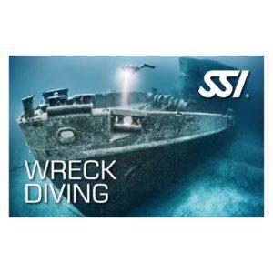Logos - SSI-Wreck